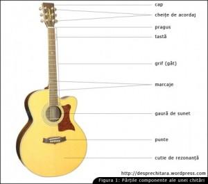 Partile chitarei acustice