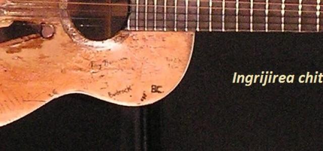 Îngrijirea chitarei